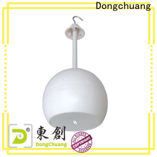 Dongchuang best value horn stereo speakers company for show