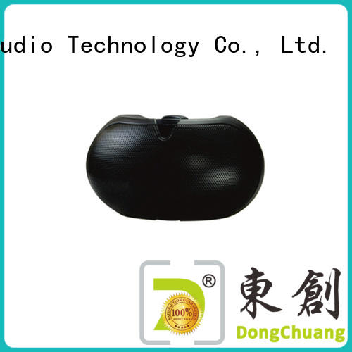 Dongchuang high end in wall speakers factory price for professional